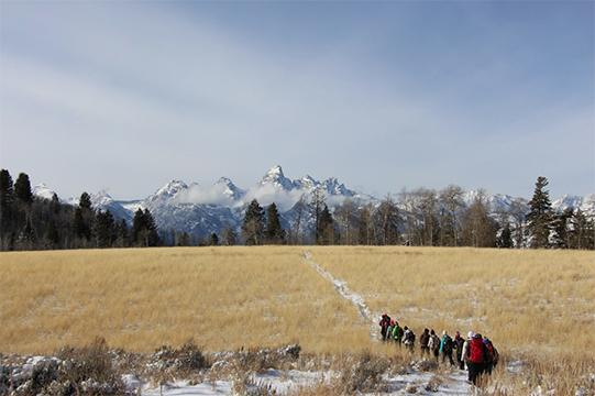 On the last day, the whole group hiked from campus to Coyote Rock, this is a picture of their return.
