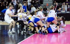 State Volleyball Photo Gallery