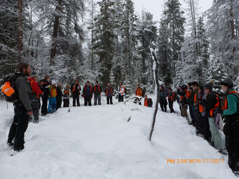 Students gather around to observe wildlife tracks.