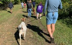 Andrew Schmidt, '22, treks with goats at Hoof It, a family-owned business in Galena. Photo by Sami Rury, '22. Check out our Oct. 1, 2020, edition.